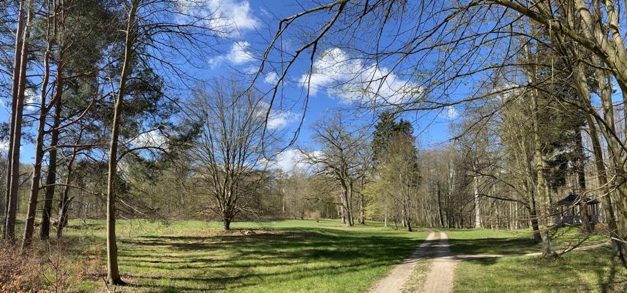 Große Wiese im Lenné-Park Görlsdorf im Frühjahr
